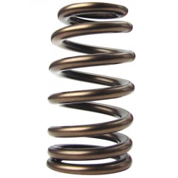Valve Springs For LS7 Engines